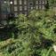 Hands on Urbanism 1850-2012. The Right to Green, Edited by Elke Krasny <br/> Architekturzentrum Wien 2012 IV MCCM Creations ©