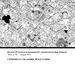 SIU XV Conferenza Cover pubblicazione Atti