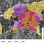 Planum II(2012) POLIS, Towards Solar Urban Planning in Europe </br> Vitoria-Gasteiz map with identification of homogeneous areas