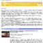 Planum Newsletter no.2-2012.jpg