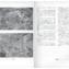 Urbanistica n.3/1936 | pp. 124-125
