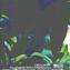 UPHD GREEN, a cura di G. Fini, V. Saiu, C. Trillo | Planum Publisher 2020 | BACK COVER