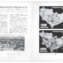 Urbanistica n.2/1936 | pp. 53-54