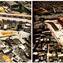 F. Chiodelli, São Paulo, The Challenge of the Favelas. A cidade informal no século 21. <br/> Favelas rehabilitation project (Vila Nilo and Santa Inês – N.Senhora Aparecida) <br/> Source: Diniz dos Santos e França (2008), p.53-58