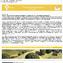 Planum Newsletter no.9-2013.jpg