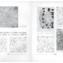 Urbanistica n.3/1936 | pp. 101-102